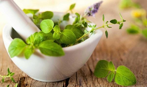 Лечебные растения от кожных проблем